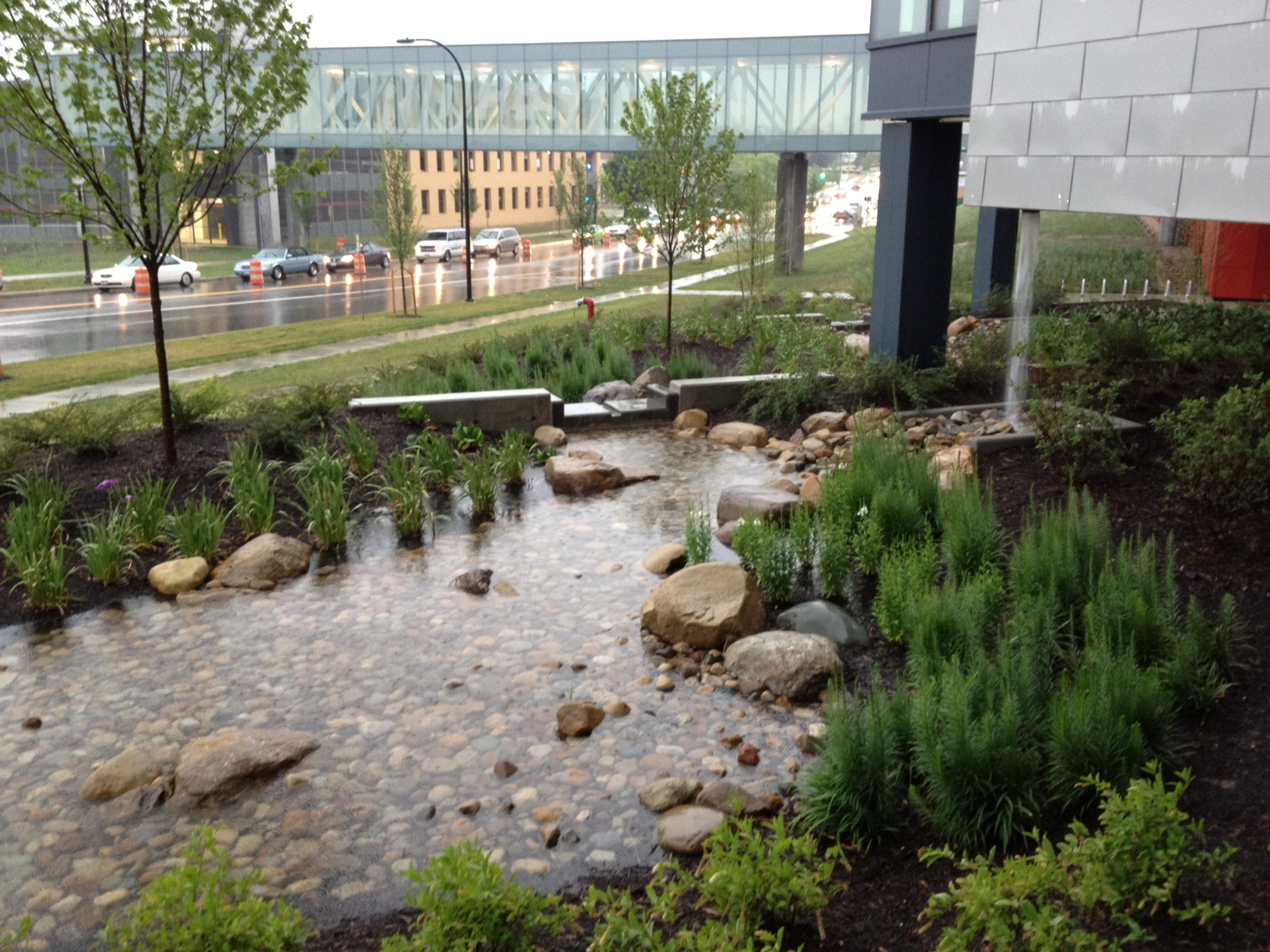 "Gardening Group: The ""So Much More"" Of Stormwater Management"