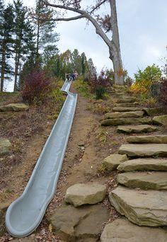 seacrest-arboretum